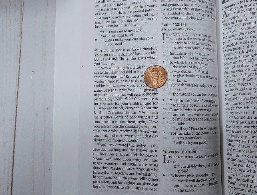 ESV One Year Bible Text