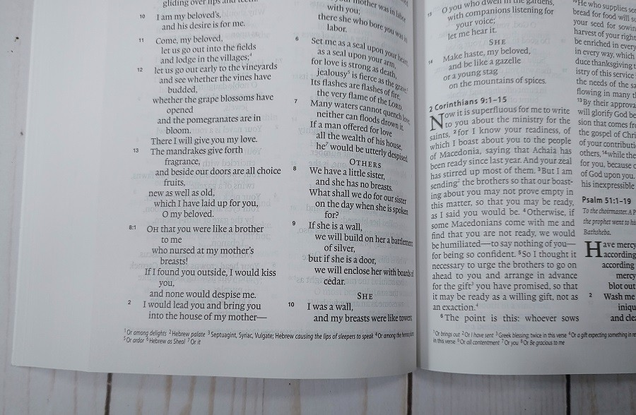 ESV One Year Bible Footnotes