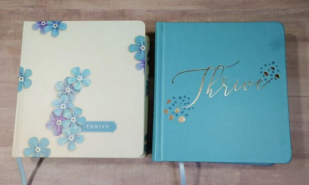 NLT Thrive Creative Journaling Devotional Bible