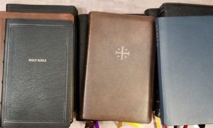 12 Bibles for Christmas 2020