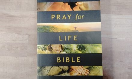 NLT One Year Pray for Life Bible Review