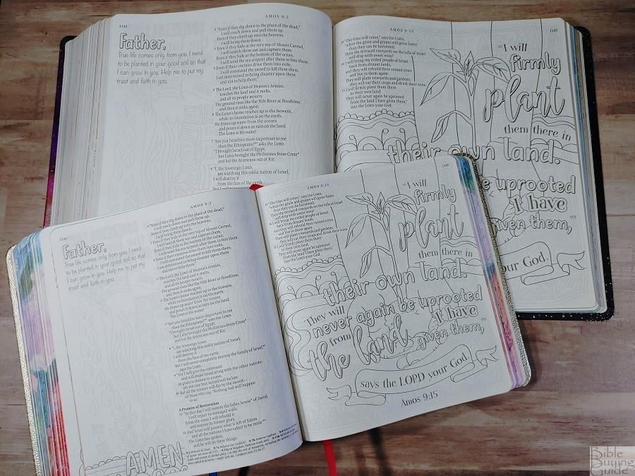 Comparison of Giant Print and Standard Size Inspire Prayer Bible