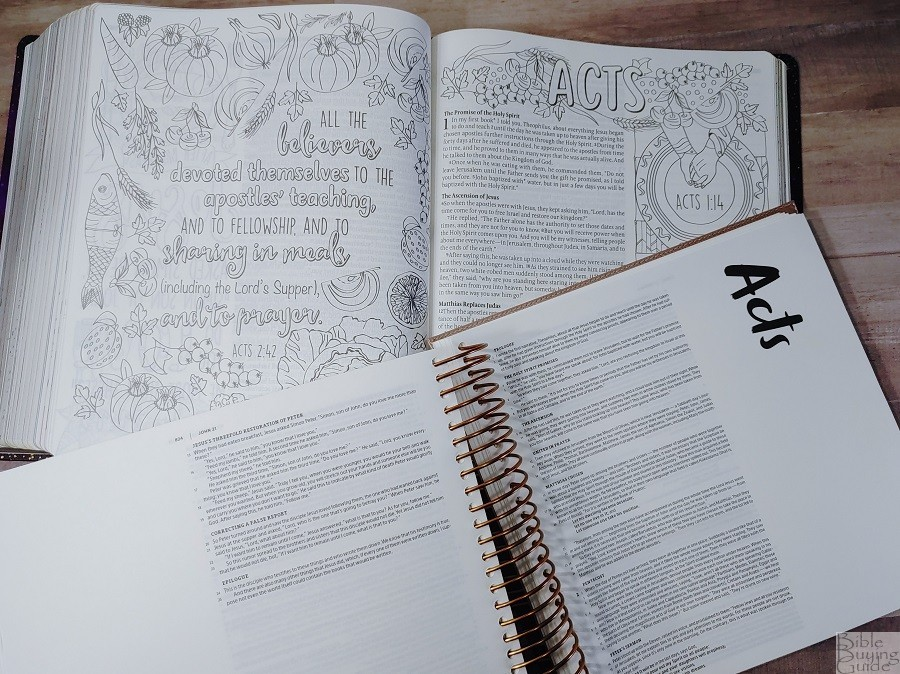 Comparison of Giant Print Inspire Prayer Bible and Illustrating Bible