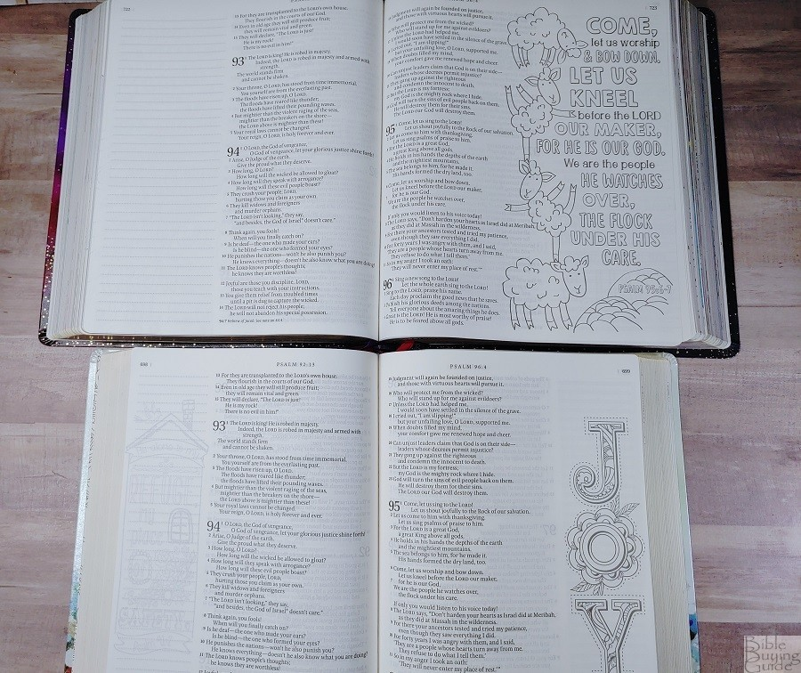 Comparison of Giant Print Inspire Prayer Bible and Large Print Inspire Bible