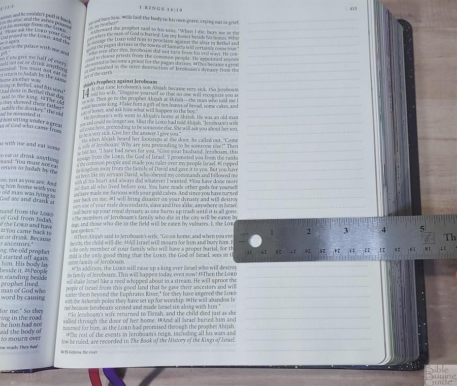 Giant Print Inspire Prayer Bible Margins
