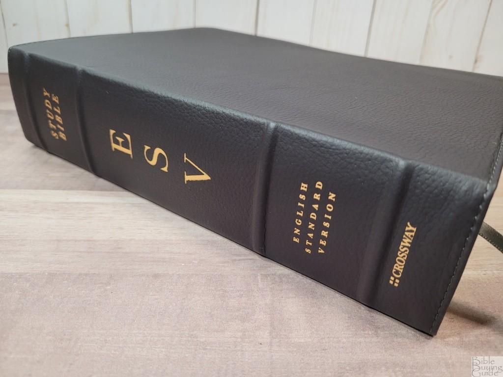 ESV Study Bible in Deep Brown Buffalo Leather
