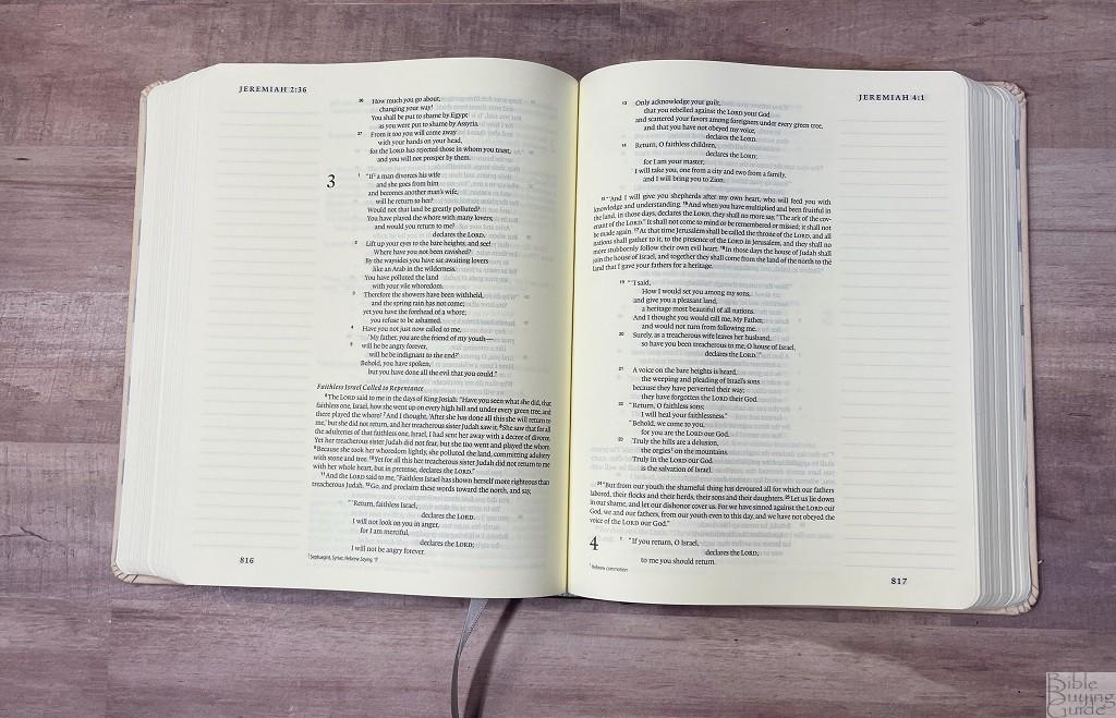 ESV Artist Series Journaling Bible paper