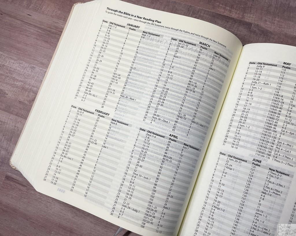 ESV Artist Series Journaling Bible reading plan