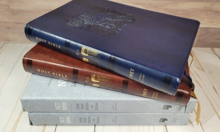 NET Bible Large Print Thinline Art Edition Review